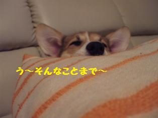 Rin071010-7.jpg