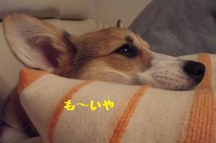 Rin071010-8.jpg