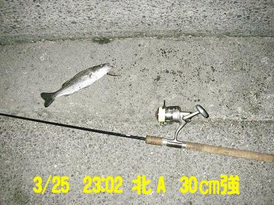 suzukikunn_kitaa_3.25_35_1.jpg