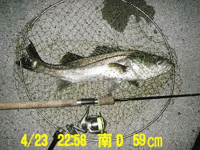 suzukikunn_minamid_4.23_59.jpg