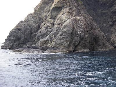 tanamae-1.jpg
