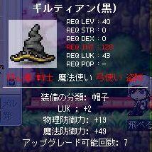 Maple5-60.jpg