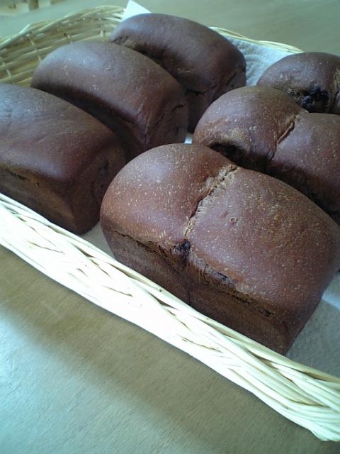 ココアミニ食パン1