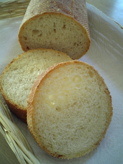 メッシュパン玄米酒粕酵母3