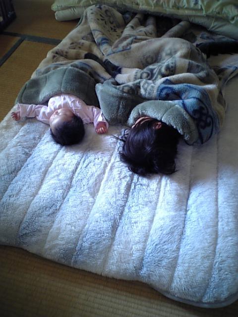 一緒に眠るサクラとコユキ