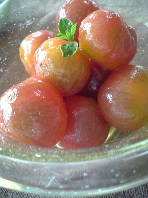 tomatomarine2.jpg