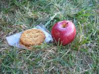 りんごとクッキー