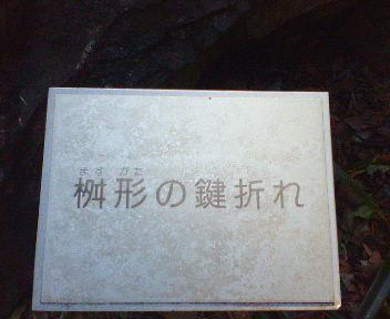 20070206091754