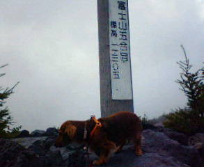 fujisama1.jpg