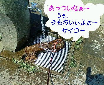 mizuasobi21.jpg