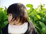季節外れの菜の花
