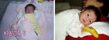生後17日のコザル。