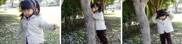 木との対話…???