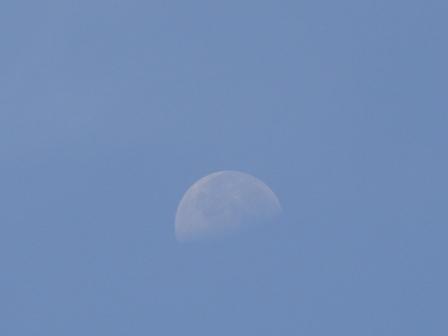 朝のHalf moon