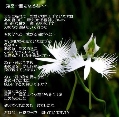 ~翔空~2