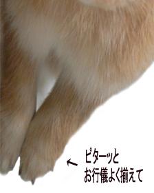 200710072