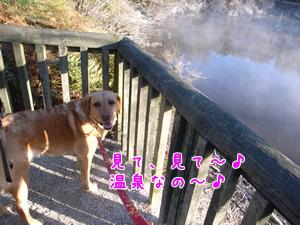 温泉byクロエちゃん