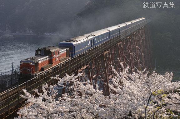 サクラが見守る鉄橋
