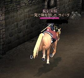 mayhorse.jpg