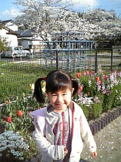 園庭のお花、きれいでしょ?