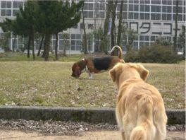 2007.03.22you-2.jpg