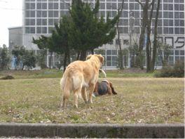 2007.03.22you-4.jpg
