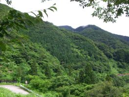 2007.07.16gokayama.jpg