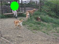 2007.08.26takasaka-4.jpg