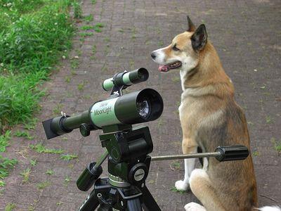 おもちゃの望遠鏡
