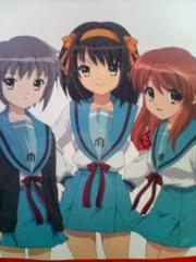 haruhi-fukuro2.jpg