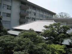 iwasaki-wakan.jpg