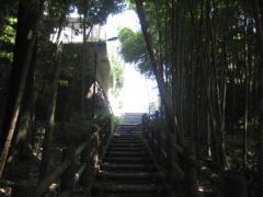 mimisuma-takebayashi.jpg