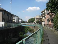 ranma-shirakogawa2.jpg