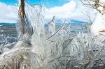 猪苗代湖の冬の風物詩「しぶき氷」