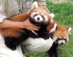宮崎市塩路のフェニックス自然動物園で