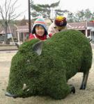九州自然動物公園・アフリカンサファリで