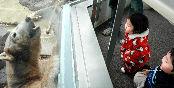秋田県男鹿市戸賀塩浜の男鹿水族館「GAO」で