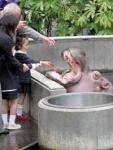 石川県能美市のいしかわ動物園