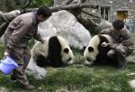 写真は25日撮影(2007年 ロイター/China Daily)(ロイター)