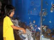 浜松市西区の体験型水族館「ウォット」で