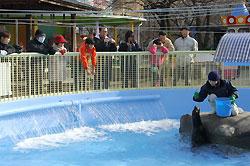 長野市の城山動物園