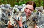 人工授精で誕生したコアラの子供とその親 AP