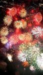 夜空を飾る色とりどりの花火=大阪府富田林市
