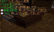 20070924165452.jpg