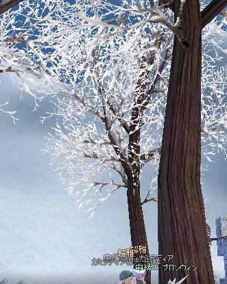 樹氷の下で