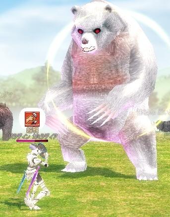 白熊くんw
