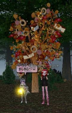 お菓子の木^^