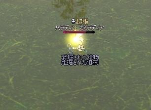 みえませ~ん^^;