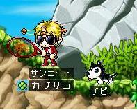 Maple0141-1.jpg