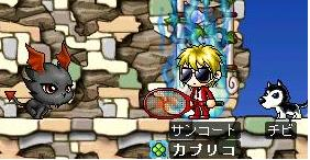 Maple137-1.jpg